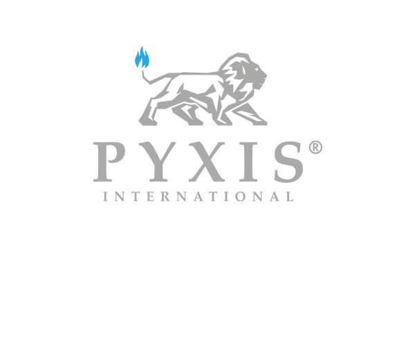 Referencia Logó Arculat pyxis weboldal 4